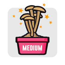 100% mycelium medium grow kit