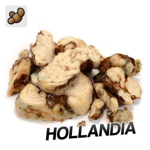 Psilocybe Hollandia Truffes (15 grammes)