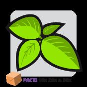 Salvia Divinorum 1 paquet de combinaison