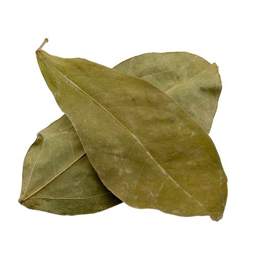 Ajos sacha - Leaves | Mansoa alliacea