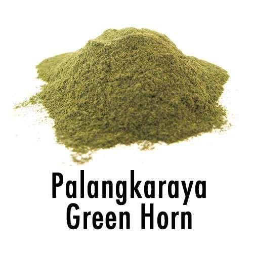 Palangkaraya Green Horn - Kratom (Mitragyna Speciosa)