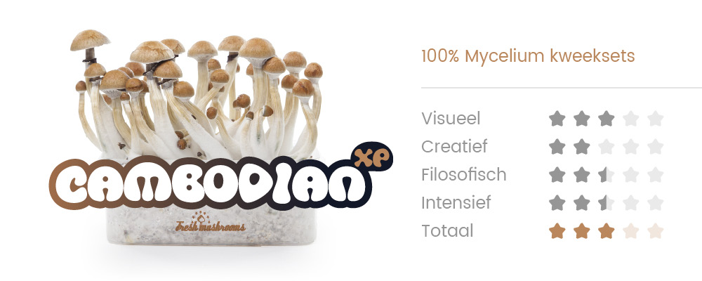 100% MYCELIUM Pes Amazonian - Mushroom growkit 1200cc