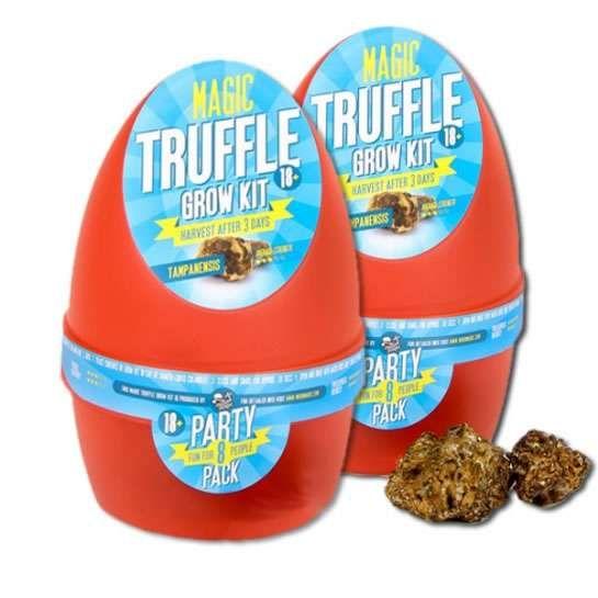 2X Growkit Tampanensis Magic Truffle  – BUY 1 GET 1 FREE