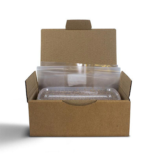 Sterilised substrate kit - Legal in each country