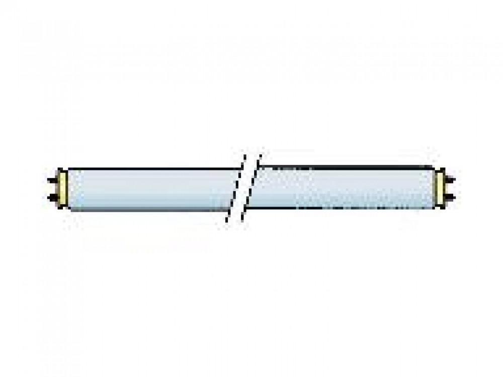 Buislamp TL 12V/8W