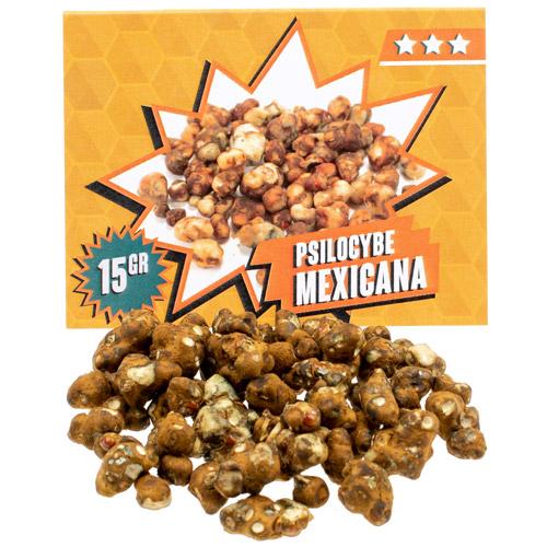 Mexicana 15 gram - Magic Truffles